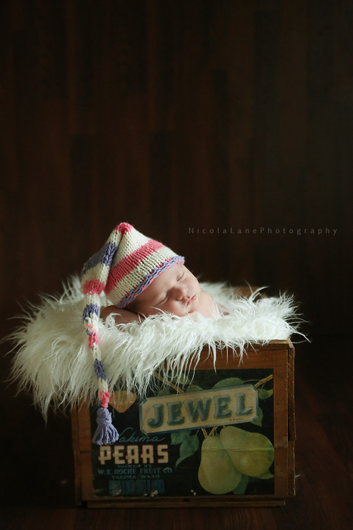 Baby in a Jewel Box, North Carolina Newborn Photographer