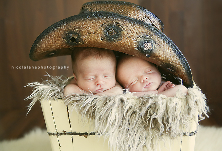 Newborn Photographer in Raleigh NC
